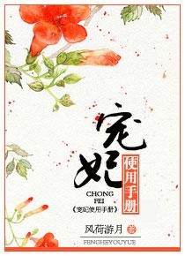 Chongfei Manual