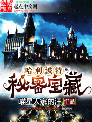 Harry Potter and the Secret Treasures